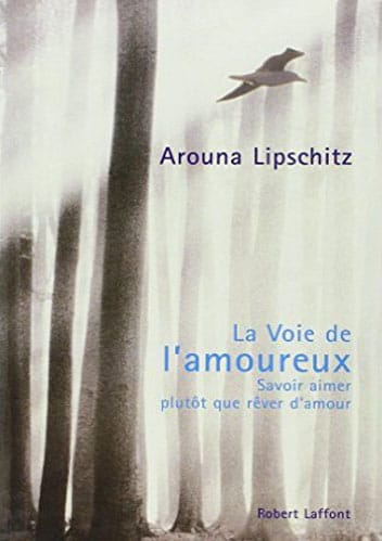 la-voie-de-lamoureux-arounalipschitz
